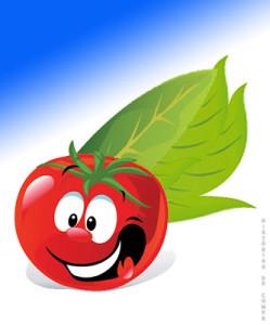 HdC o super tomate