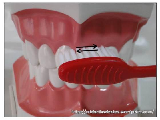 Escova de dente na pepeca - 3 8