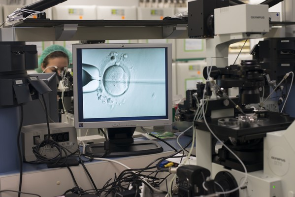 Fertilização in vitro ICSI no IVI